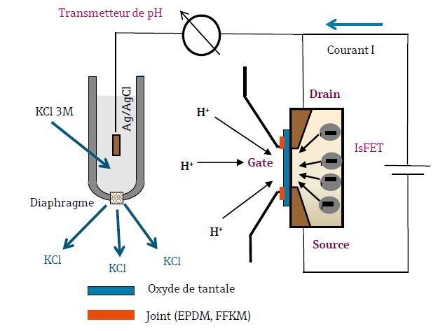 Schéma du Principe de Mesure d'une Électrode à effet de champs IsFET pour la mesure de pH