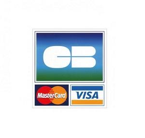 Logo de paiement par carte bancaire Tecnoland